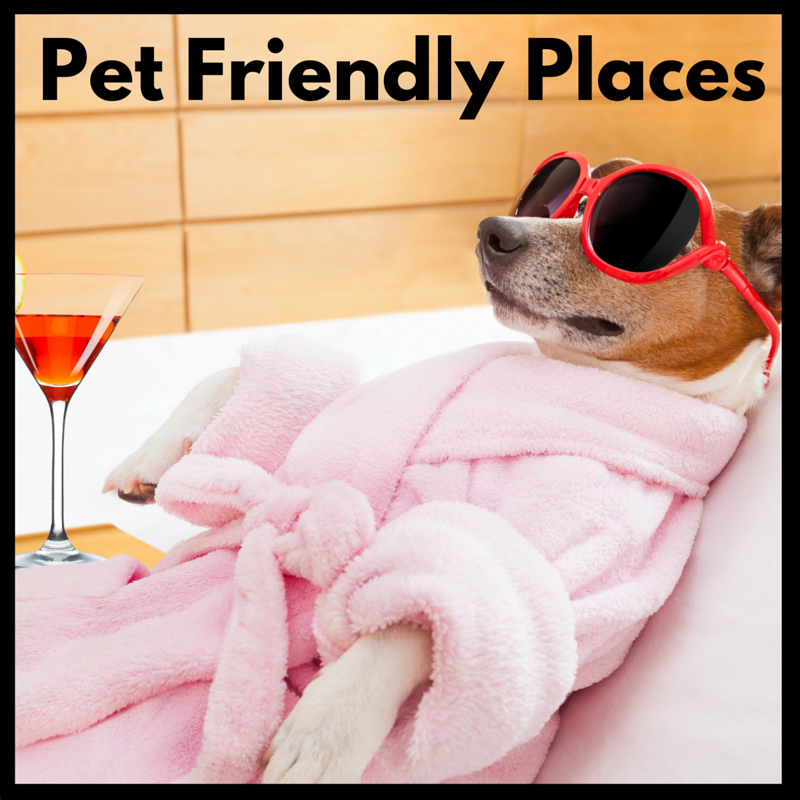 pet friendly places