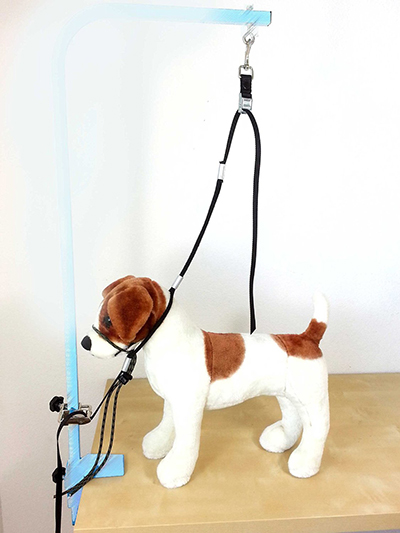 Dog grooming harness the best reviewed diy dog grooming diy dog grooming groomers hook up cross system solutioingenieria Images