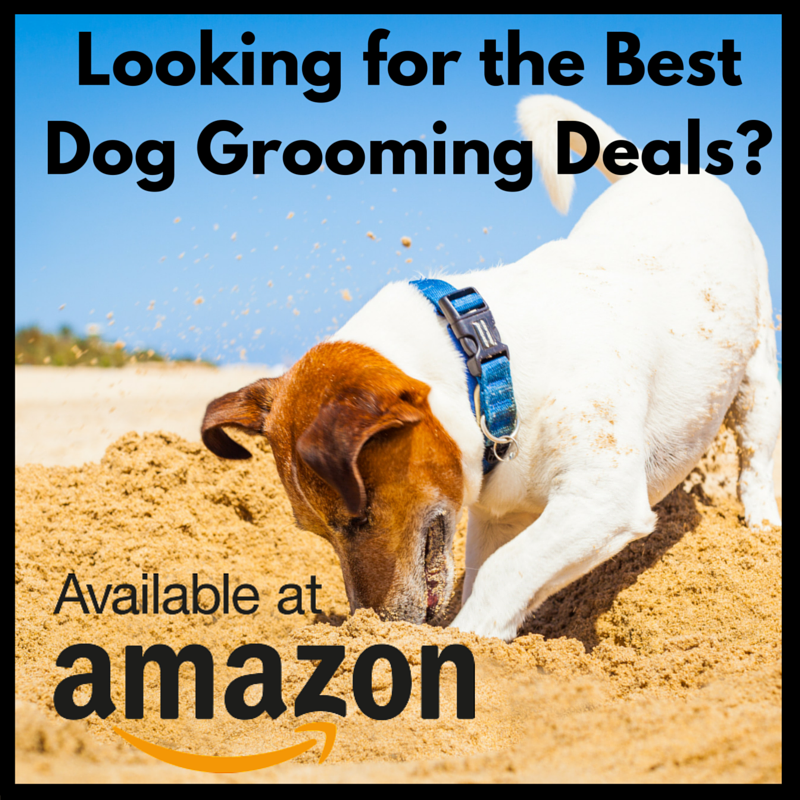 diy dog grooming banner