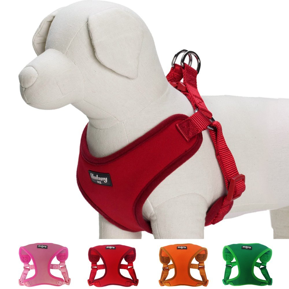 Dog Grooming Harness The Best Reviewed Diy. Blueberry Pet Classic Harness. Wiring. Homemade Dog Harness Patterns At Scoala.co