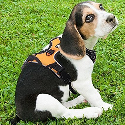 Rabbitgoo Adjustable Reflective Dog Harness
